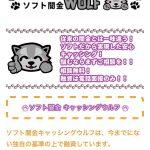 ソフト闇金WOLF(ウルフ)の詳細です!